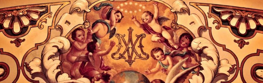 FrescosBasílicaMacarena0001web-uai-1440x455